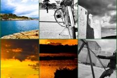 Griglia di immagini in bianco e nero e a colori
