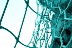 azzurro su rete