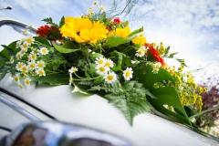 Altri fiori sull'auto